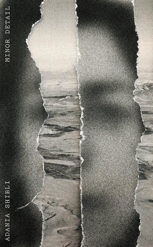 The cover of Minor Detail shows the blurry image of a woman's face and behind her, as if through a ripped page, is a desert landscape.